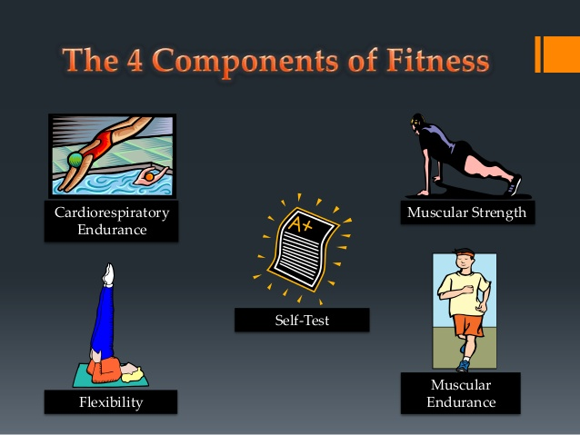 Four Components of Fitness That You Should Know